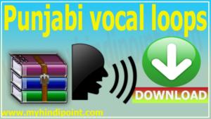 punjabi vocal loops