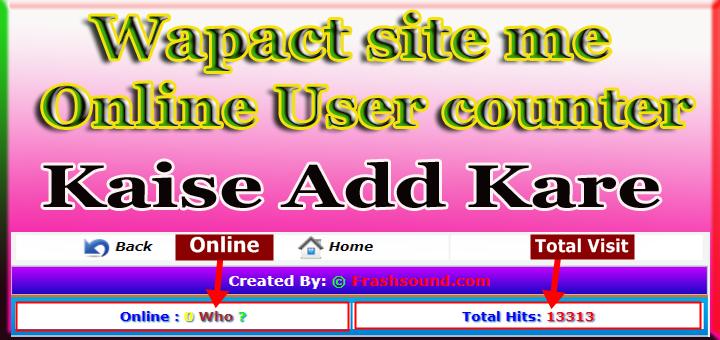 wapact website mai manual online counter code kaise add kare wapact codes